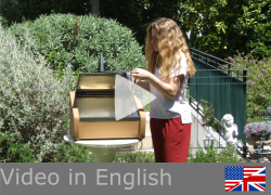 Video Suntaste English